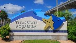 Texas State Aquarium & Corpus Christi Trip 11-23-18 to 11-25-18