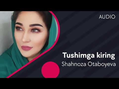 Shahnoza Otaboyeva - Tushimga kiring