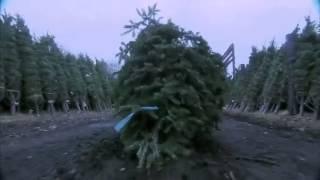 Treevenge Trailer