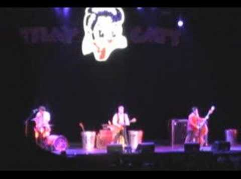 Concert Stray Cats