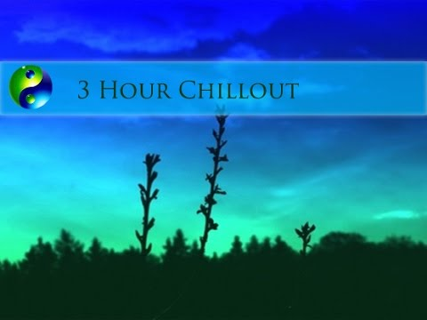3 Hour Relaxing Music; New Age Music; Chillout Music; Music for relaxation; Instrumental music  🌅478