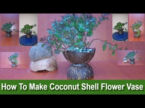 How To Make Coconut Shell Flower Vase At Home