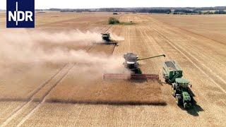 Digitale Landwirtschaft: Hightech auf dem Acker   Wie geht das?   NDR Doku