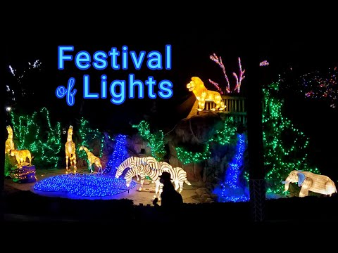 Cincinnati Zoo's PNC Festival of Lights! Voted No. 1 Zoo Light Display in Country 2020!