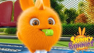 Cartoons for Children | SUNNY BUNNIES - WHISTLE | Funny Cartoons For Children