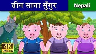 तीन साना सुँगुर | Three Little Pigs | Nepali Story | Nepali Fairy Tales | Wings Music Nepal