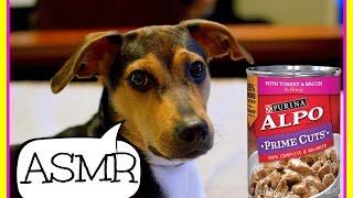 Alpo Prime Cuts Turkey & Bacon ASMR Mukbang | The Barkers