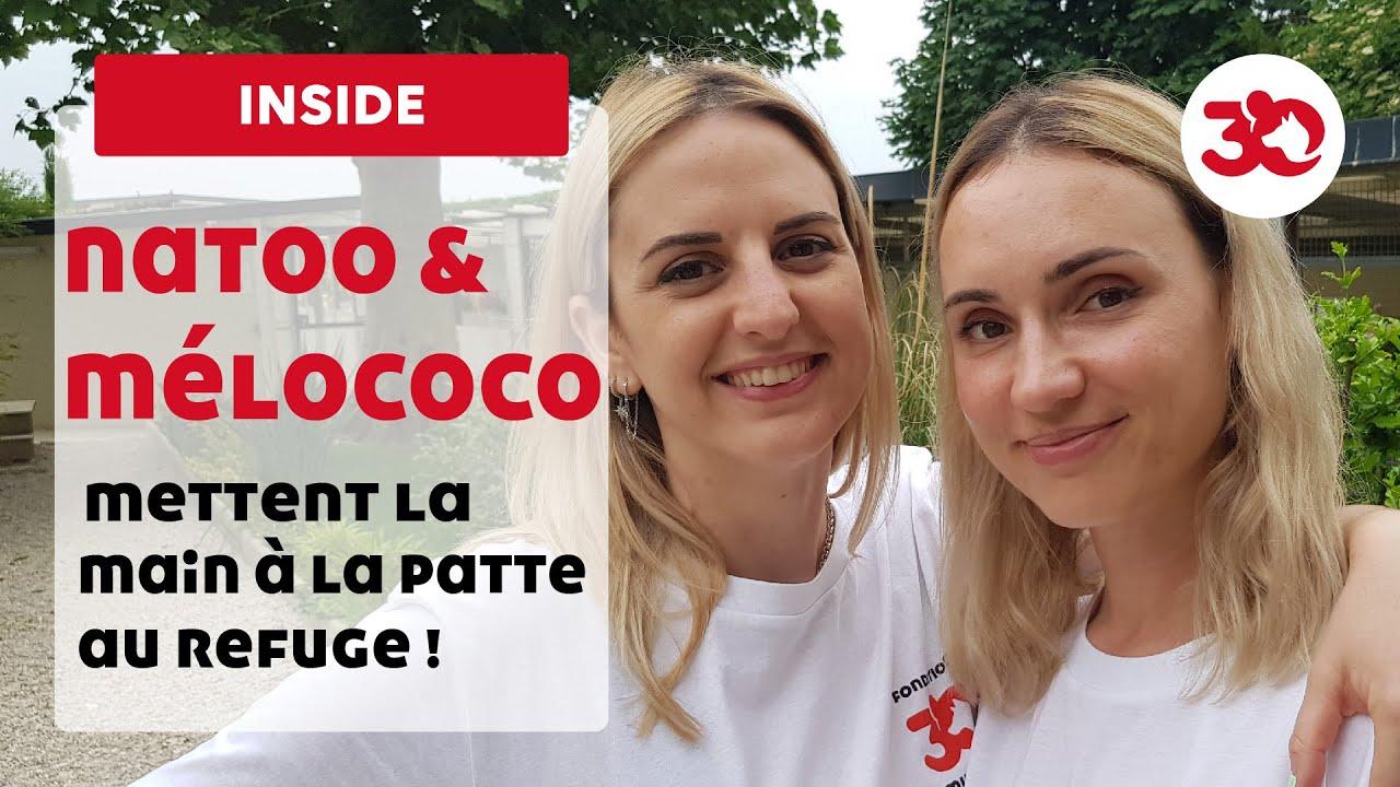Natoo et Mélo Coco au refuge 30 Millions d'Amis
