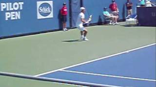richard gasquet s one handed backhand