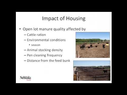 Anaerobic Digestion of Finishing Cattle Manure