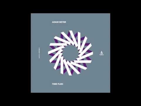Adam Beyer - Time Flies (Tiger Stripes remix) - Truesoul - TRUE1264