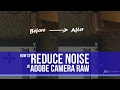 Noise Reduction in Adobe Camera Raw