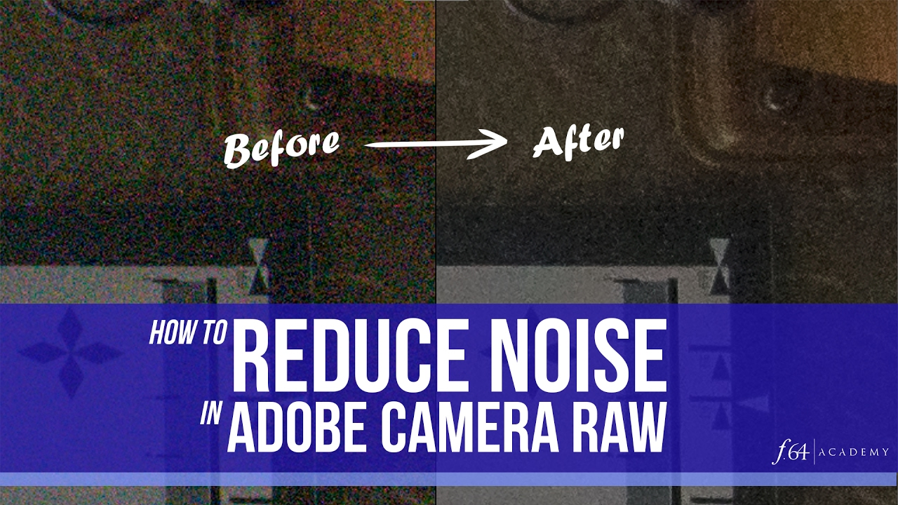 Turn Down the Noise in Photoshop CS3 - Layers Magazine