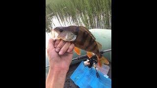 Ловля щуки в марте: Рыбалка на щуку в марте со спиннингом ...