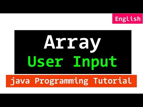 28 | User Input for an Array with Example in Java Programming Tutorial For Beginners