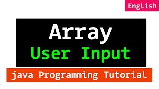 User Input for an Array with Example in Java Programming
