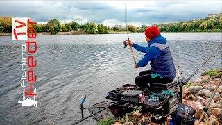 Рыбалка 2019. Рыбалка на фидер. Новое место ловли.Рыбалка в сентябре.Приколы. Vlog#42 match fishing