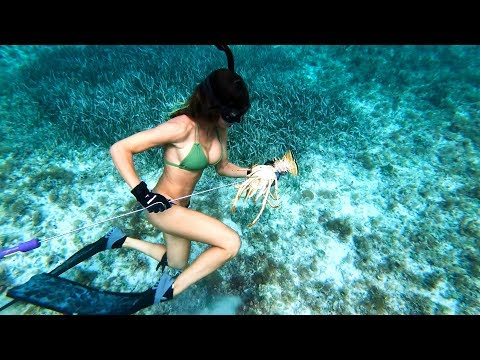 BAHAMAS Fishing And Diving Pt1
