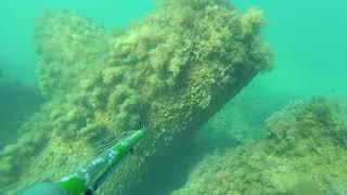 Крым Подводная охота сентябрь 2019