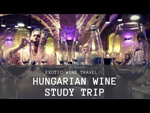 Hungarian Wine Study Trip