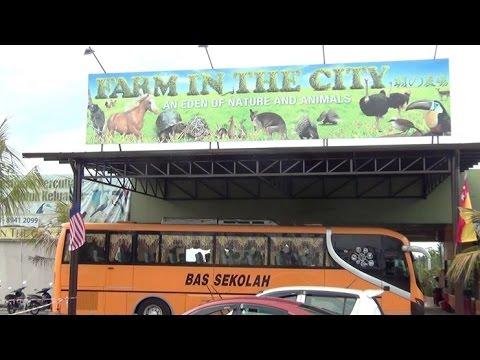 PMK - LAWATAN KE FARM IN THE CITY (2014)