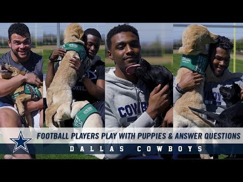 Dallas Cowboys Players Play With Puppies While Answering Questions   Dallas Cowboys 2019