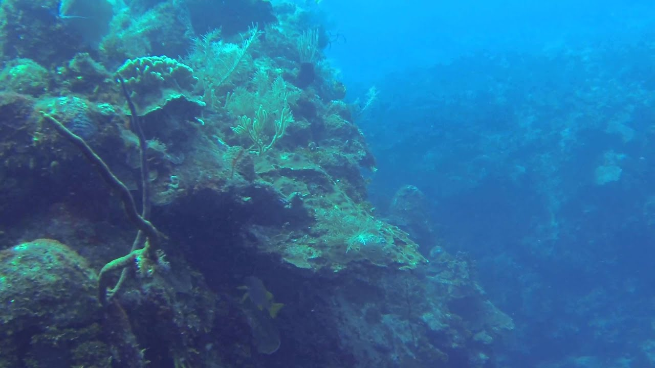 Grand Cayman Island Scuba Diving