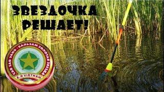 Рыбалка на КАРАСЯ с ПОПЛАВКОМ | ЗВЁЗДОЧКА РЕШАЕТ
