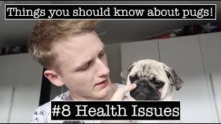 Things you should know about pugs! #8 Health Issues