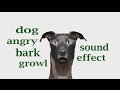 The Animal Sounds Dog Angry Bark And Growl Sound Effect Animation mp3