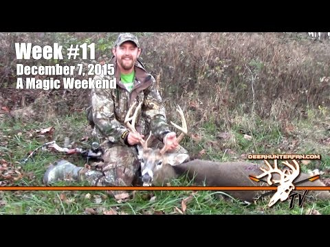 BBD in Ohio and Missouri