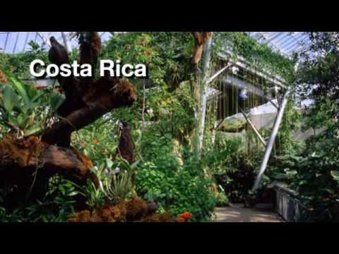 Cleveland Botanical Garden Glasshouse Virtual Tour   YouTube