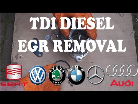 TDI EGR Removal/Blanking