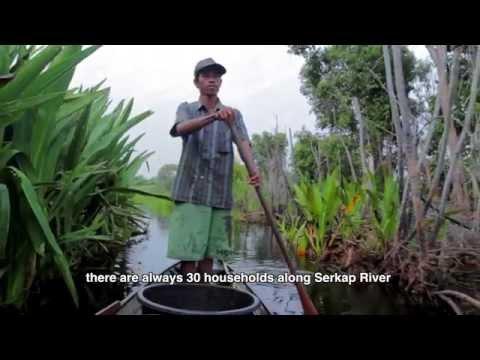 Serkap River, Sumatra's Hidden Paradise
