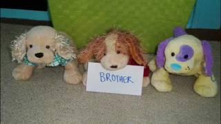 best friend s brother bfb webkinz music video