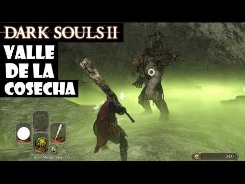 Dark Souls 2 guia: VALLE DE LA COSECHA || Juramento Herederos del sol: Pacto cooperativo || Ep.31
