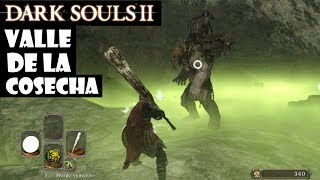 Gambar cover Dark Souls 2 guia: VALLE DE LA COSECHA || Juramento Herederos del sol: Pacto cooperativo || Ep.31