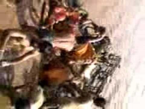 Nasik dhol Ganesh Viserjarn.mp4