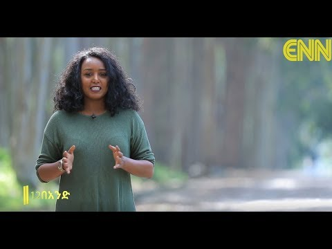 Ethiopia: Aromatic and Medicinal Plants Research in Wondo Genet Agricultural Center - ENN