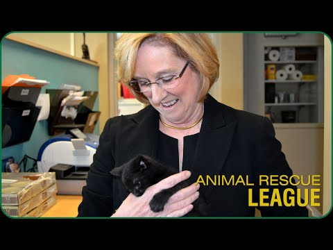 Pennsylvania Social Security Disability Attorney Cindy Berger Visits The Animal Rescue League