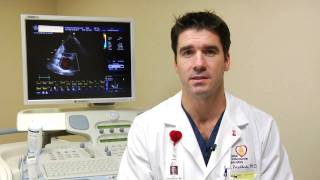 Cardiology Information : What Is Cardiovascular Disease?
