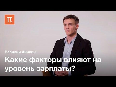 Человеческий капитал — Василий Аникин / ПостНаука