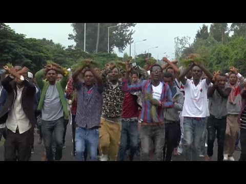 Oromo protesters target foreign businesses in Ethiopia
