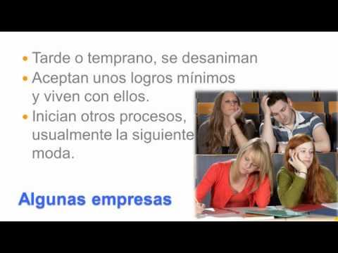 Desafíos en Cultura Organizacional y Empresarial Videos De Viajes