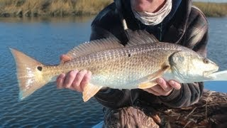 Top Water Redfish In Louisiana