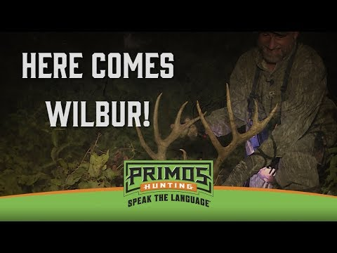 Will Primos Shoots Giant River Bottom Whitetail