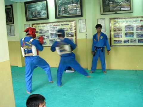 doi khang nam -vovinam