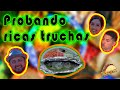 Video de Tlilapan