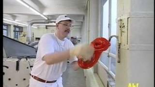 Wissen macht Ah!: Wie macht man Bonbons?