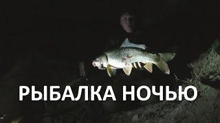 Ночная рыбалка. Видео отчёт о ночной рыбалке на сома и карпа.(Ночная рыбалка. Видео отчёт о ночной рыбалке на сома и карпа. Ночная рыбалка занятие даже более увлекательн..., 2015-12-03T09:27:16.000Z)